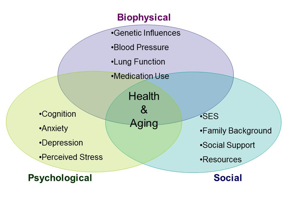 the theory of bio psychosocial model Psychological therapies within the learning disability camhs service having a learning disability affects the way a person understands.